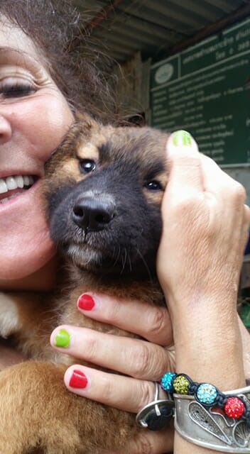 vergess welpenbaden4 | Happy Dogs Koh Chang- animal welfare and shelter care Thailand