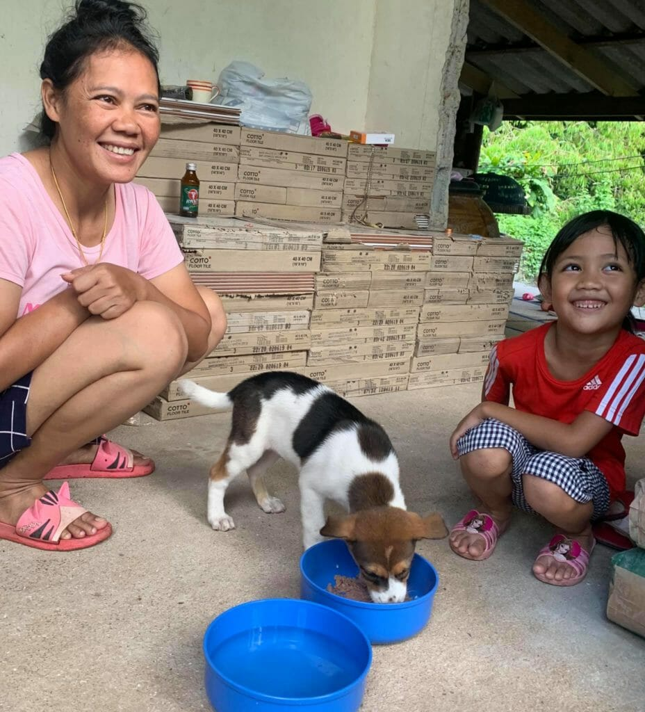 Makut adoted 2 | Happy Dogs Koh Chang- animal welfare and shelter care Thailand