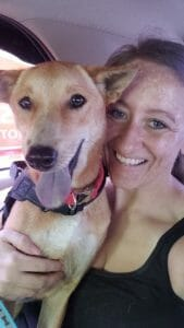 Attachment 1596536990 | Happy Dogs Koh Chang- animal welfare and shelter care Thailand