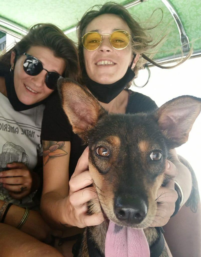 Nilde Tuk Tuk Bangkok | Happy Dogs Koh Chang- animal welfare and shelter care Thailand