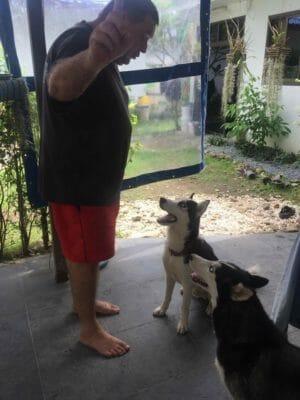 Sali mit neuem Besitzer 2